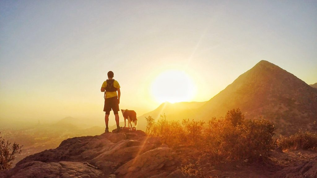 trekking con perros
